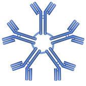 Fotografia molecola di pentamero Anticorpo IgM