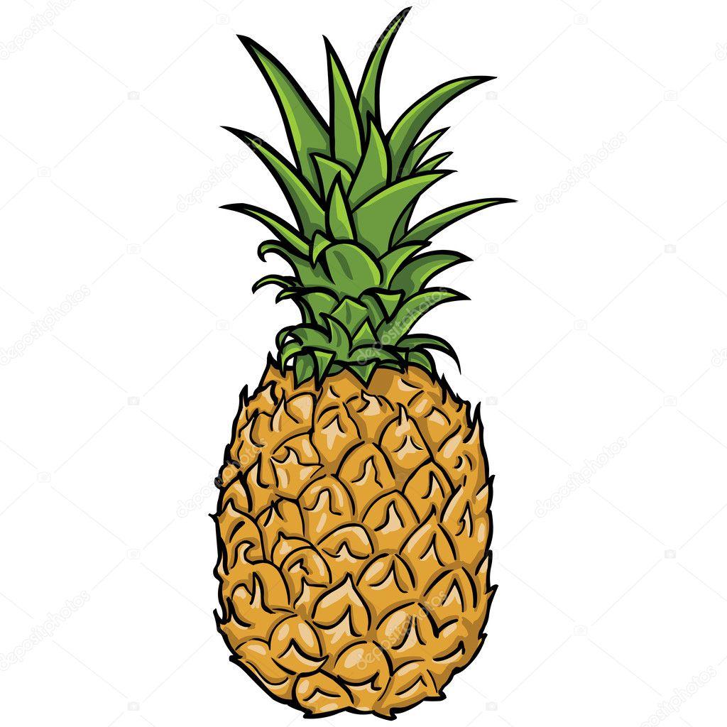 Vector pineapple — Stock Vector © nikiteev #29728113