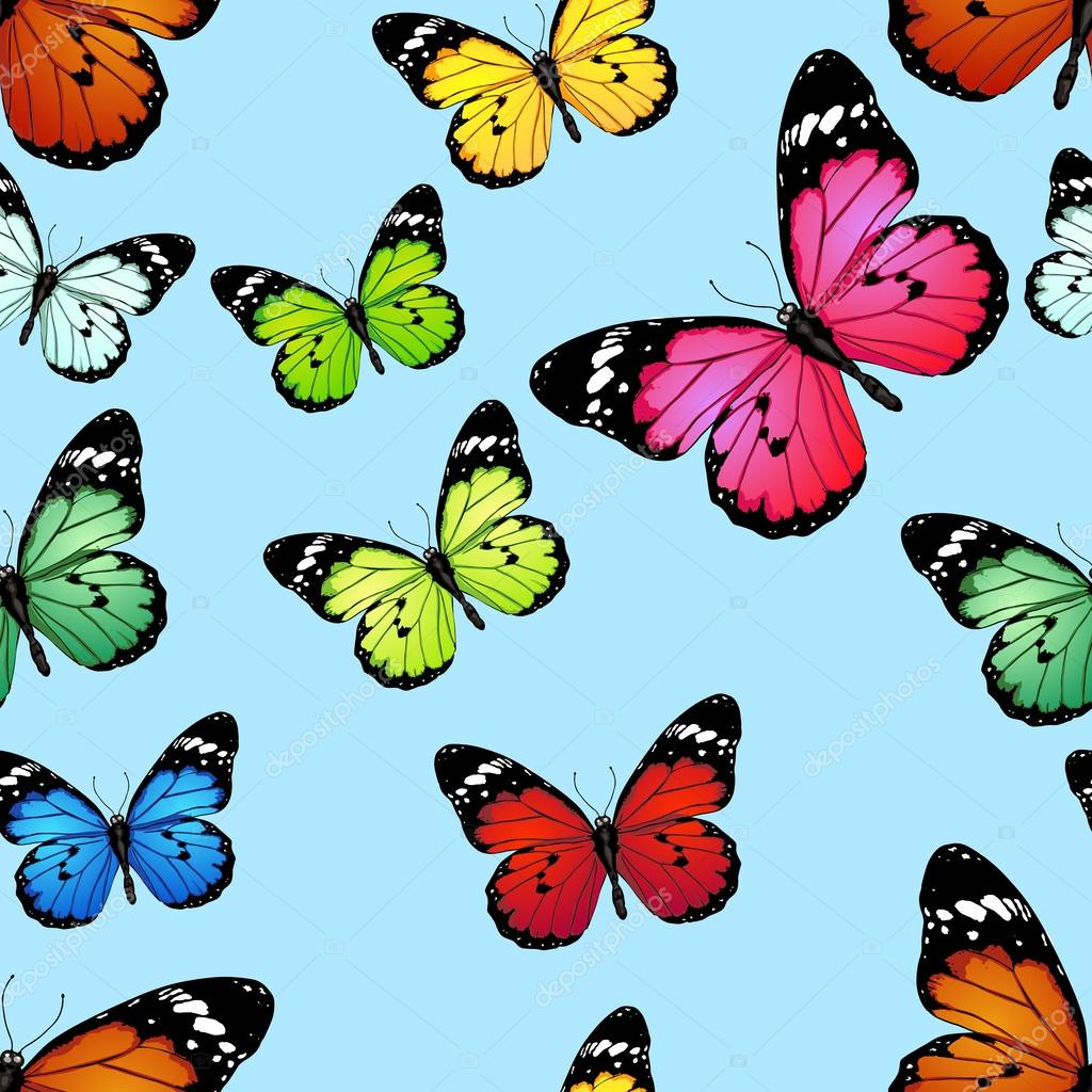 Vector seamless pattern of colored butterflies