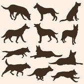 Vektorové sada siluety psů