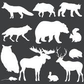 Fotografie Vektor-Set von weißen Waldtiere Silhouetten