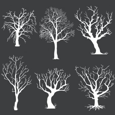 Vector set of white bare trees silhouettes