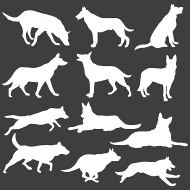 Vector set of white dogs silhouettes