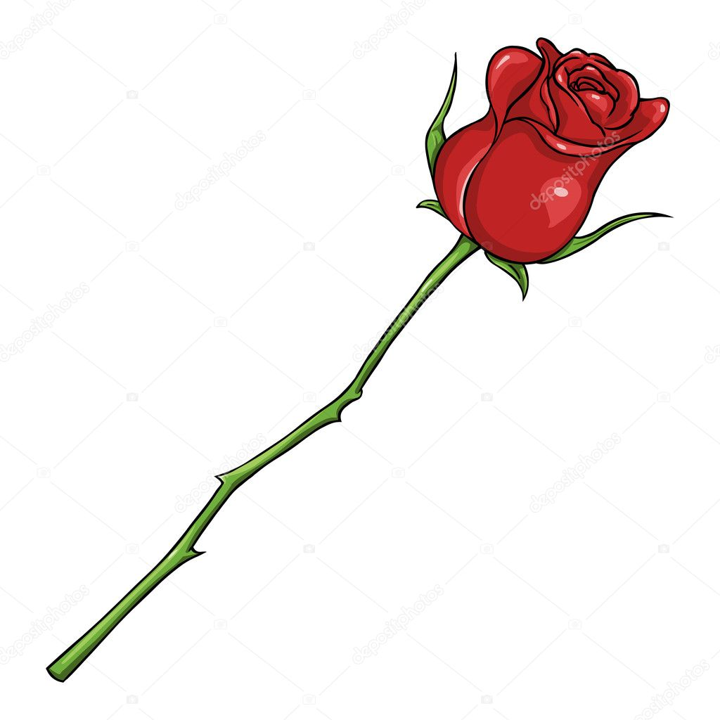Vector Cartoon Isolated Illustration - Red Rose