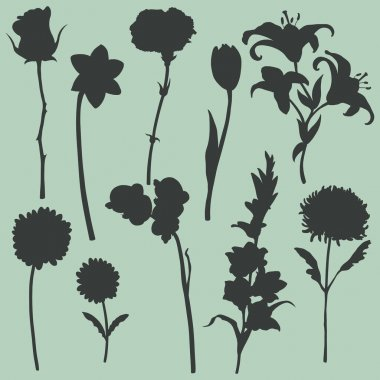 Vector set of flowers silhouettes