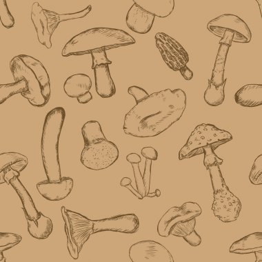 Vector Seamless Pattern of Sketch Mushrooms