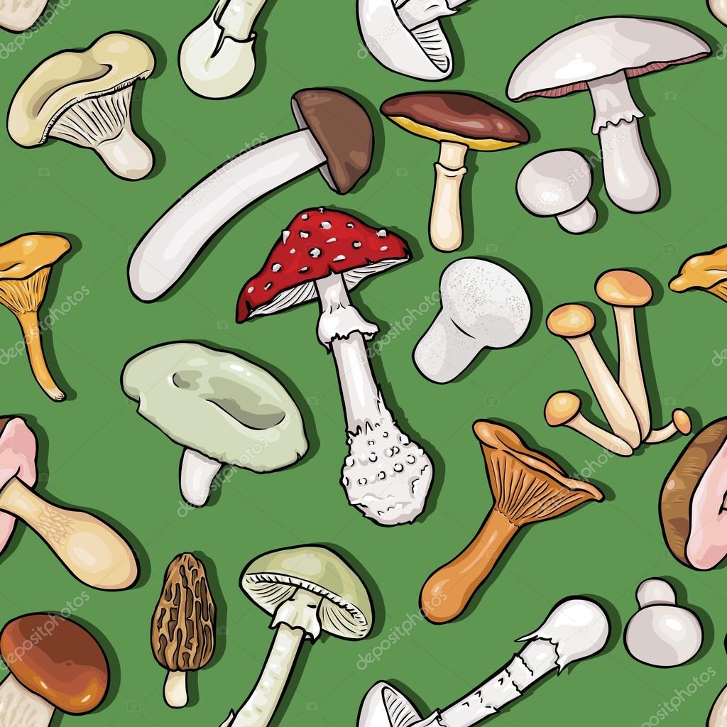 Vector Seamless Pattern of Mushrooms