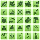 Fényképek vektor sor növények ikonok