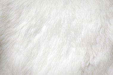 White fur background stock vector