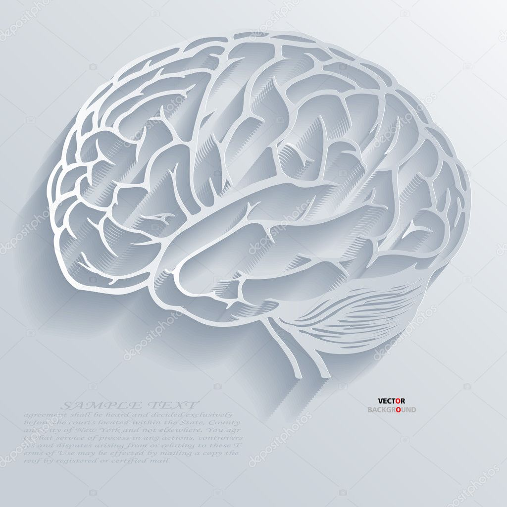Brain Background Abstract 3D Design vector — Stock Vector ...