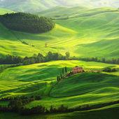 farma na zelené louce v Toskánsku