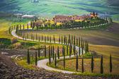 slunečné pole v Toskánsku, Itálie