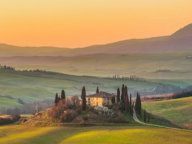 Sunny landscapes and beautiful mornings on fields located near Pienza. Between Siena and Rome, Italy stock vector