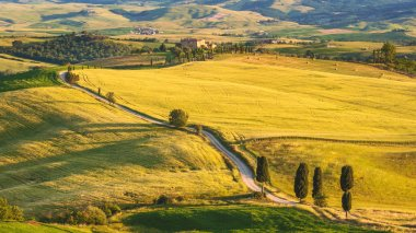 Natural white road in Tuscany, Italy