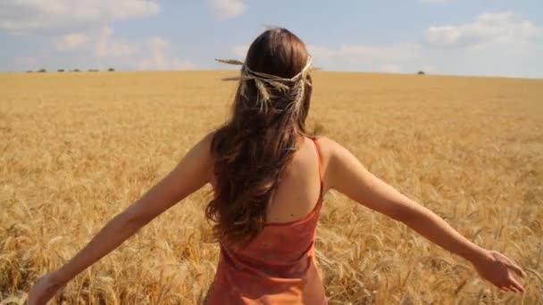 mladá zdravá žena kypřicími ruce v létě pšeničné pole hd