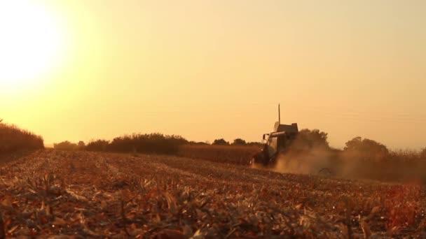 Field Harvester Combine