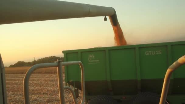 Combine Poring Crop