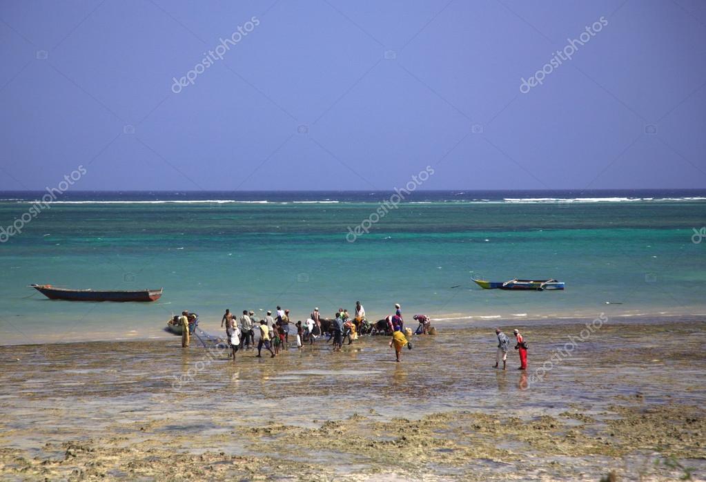 locaux acheter du poisson sur la plage photo ditoriale debstheleo 28783173