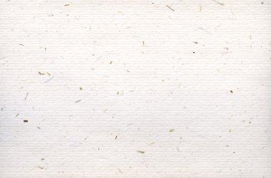 Beige paper background texture. stock vector