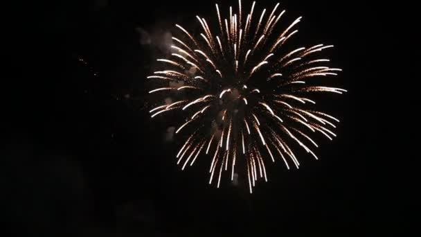 Fireworks display with sound Stock video: