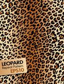 Fotografie Leopard skin, Repeat pattern