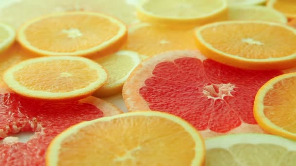 Citrus fruit slices background, fruits: oranges, kiwis, grapefruits, lemons, limes, pomelos, close up, dolly shot