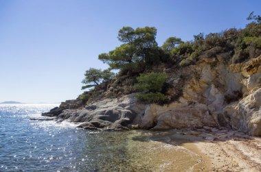 Sandy little beach in Sithonia, Chalkidiki, Greece, like a paradise