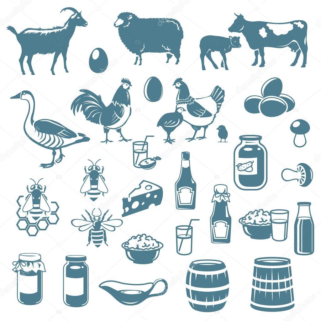 動物と食べ物のアイコン — ストックベクター © andreyoleynik #28191621