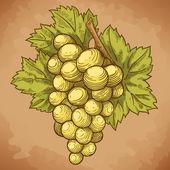 Fotografia Incisione di uva e foglie sul ramo