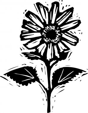 Woodcut illustration of Flower
