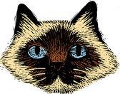 Fametszet illusztrációja macska szembenéz