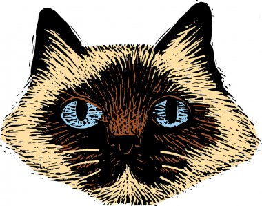 Woodcut Illustration of Cat Face
