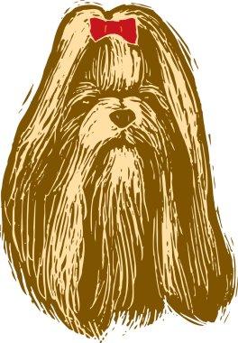 Woodcut Illustration of Pekingnese Dog Face