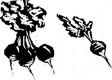 Vector Illustration of Radishes