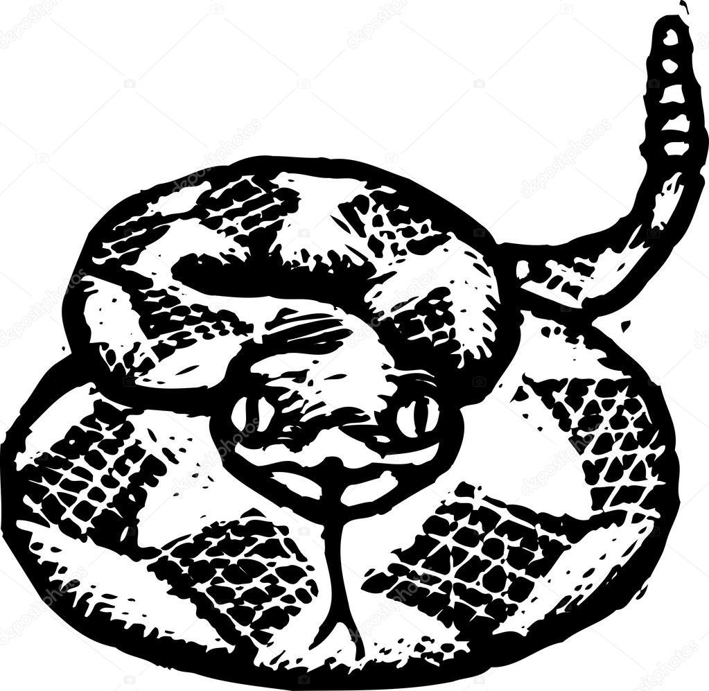 ilustración vectorial de serpiente cascabel — Vector de stock ...