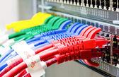 Netzwerk-Switch und utp-Ethernet-Kabel