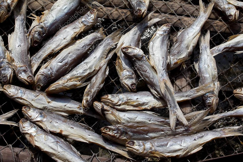 塩魚キッパー — ストック写真 © ...