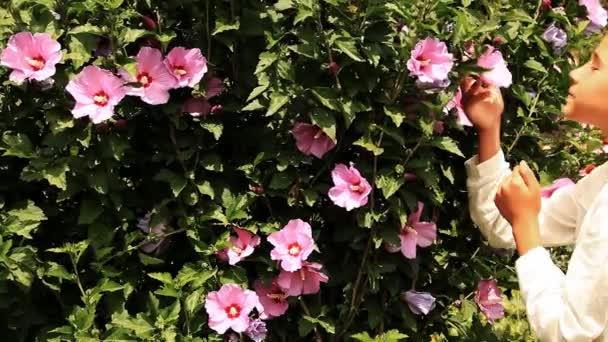 csinos, fiatal lány csodálja a szépségét virágok