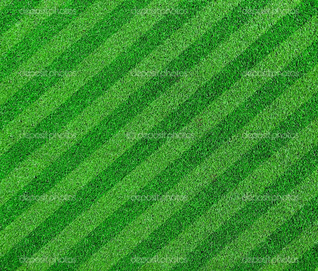 green grass football field. Green Grass Lined Football Or Soccer Field \u2014 Stock Photo A