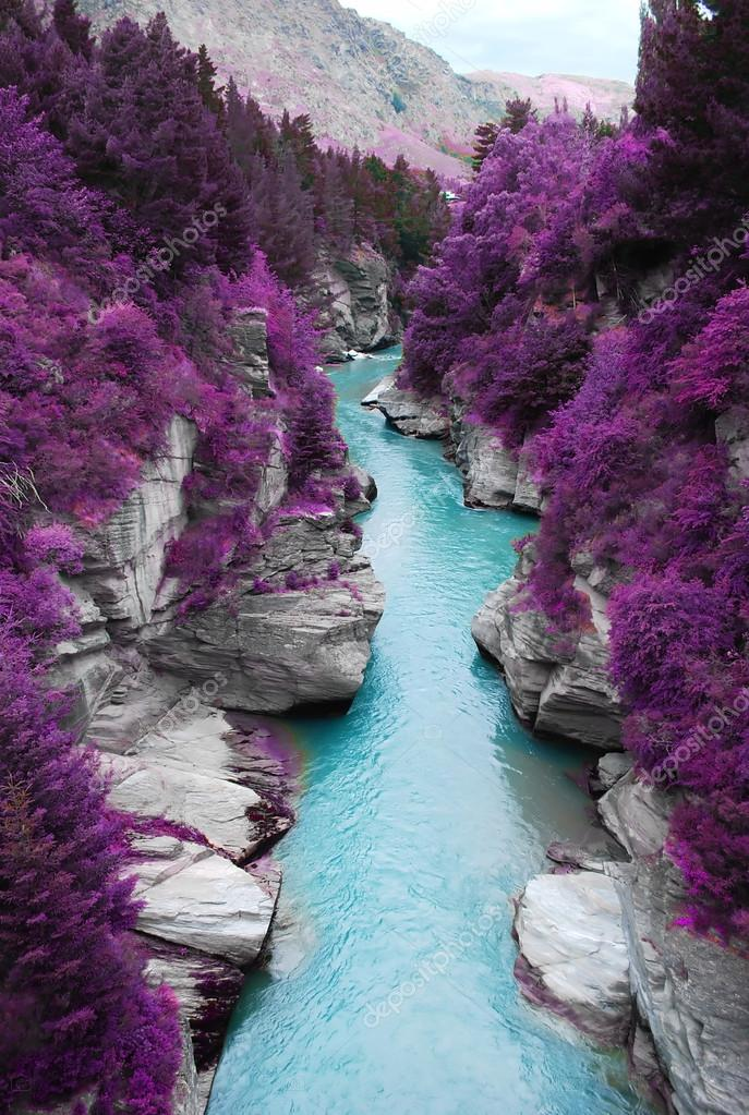 purple forest and blue stream