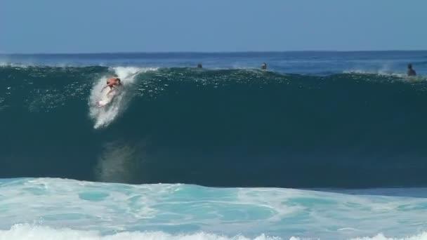 surfař dostane hlavne