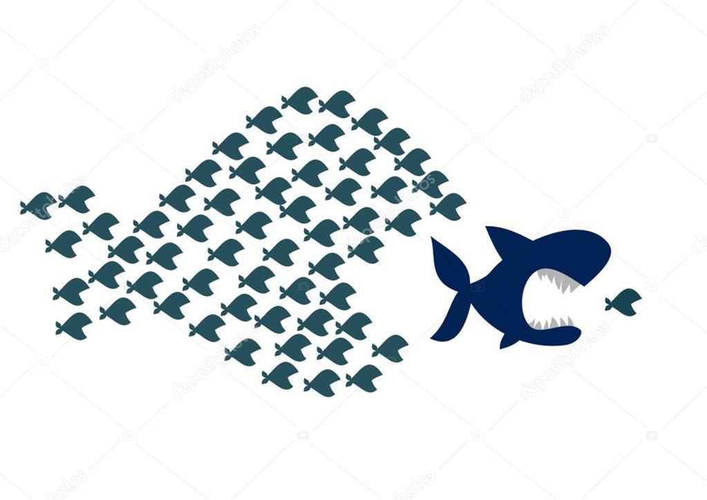 Erlaubfisch
