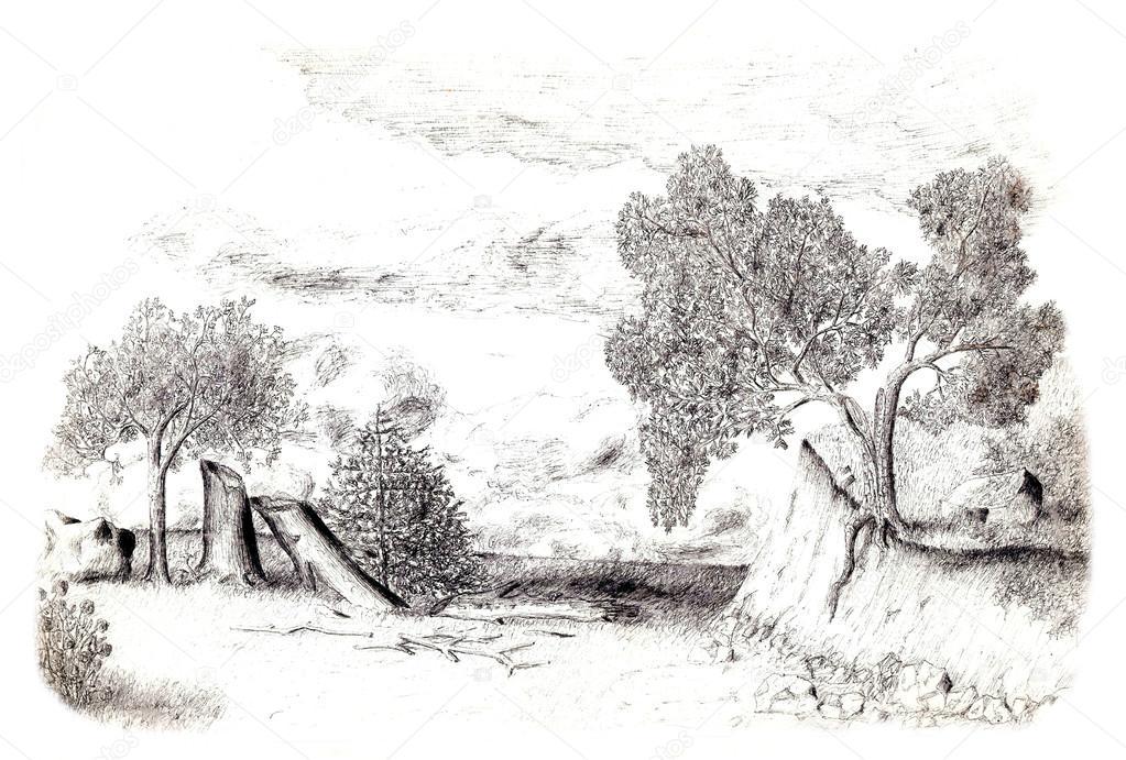 Strom Na Okraji Utesu Kresba Tuzkou Stock Fotografie C Lucaso