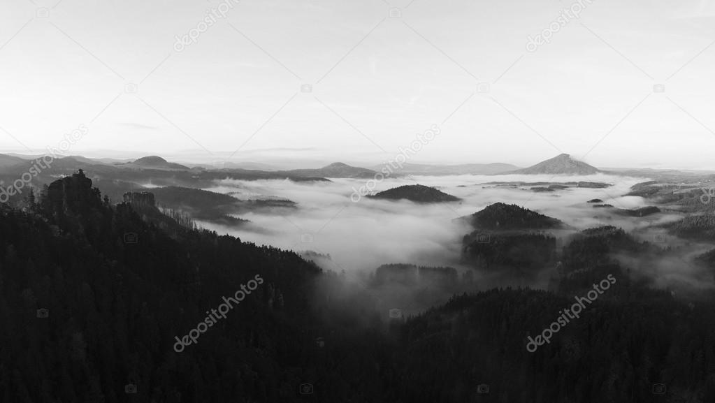 Fall misty valley early morning within sunrise. The fog is moving between hills and peaks of trees a makes with sun rays gentle reflections. Wonderful autumn morning in Bohemian Switzerland.