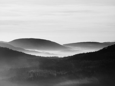 Peaks of hills and trees are sticking out from yellow and orange waves of mist. First sun rays. Black and White photo