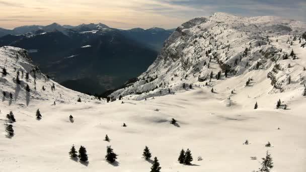 pohled do terénu na zasněženém svahu v lyžařském středisku Alpy. tmavě zelené stromy, které trčí z mrazu sněhu