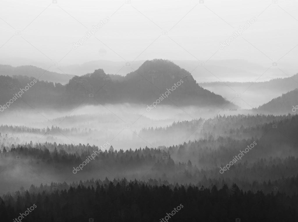 View into deep misty valley in German national park. Trees hidden in foggy gulch. Black and white picture