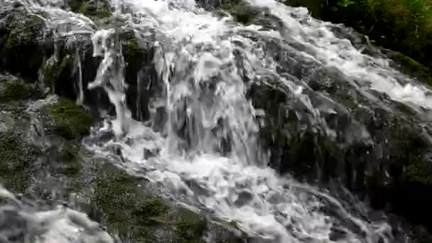 Cascade on small mountain stream, water is running trough big crack in basalt boulder and bubbles create on level milky water.