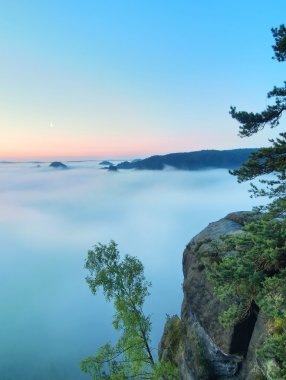 Morning view over rock and fresh green trees to deep valley full of light blue mist. Dreamy spring landscape within daybreak after rainy night. Blue pink sky on horizon, the sunrise start in minute.