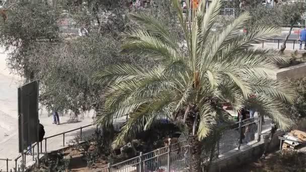 pohled na moderní Jeruzaléma od zdi Jeruzalémské staré město. Izrael